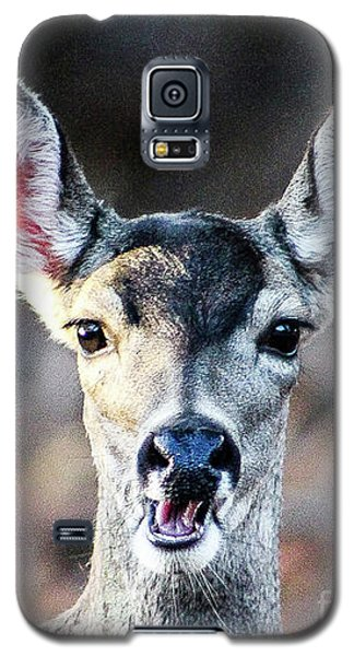 Oh, Deer Galaxy S5 Case