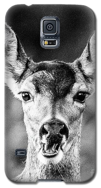 Oh, Deer, Black And White Galaxy S5 Case