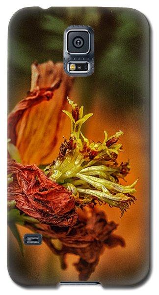Oh Orange Juice Galaxy S5 Case