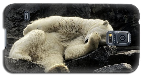 Oh What A Night Polar Bear Galaxy S5 Case