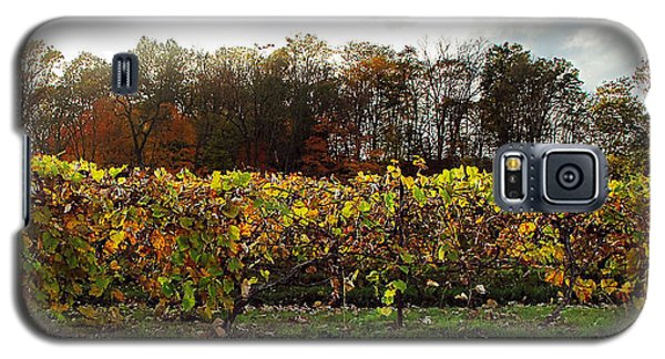 Galaxy S5 Case featuring the photograph Ohio Winery In Autumn by Joan  Minchak