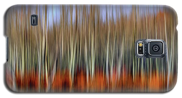 Oil Painting Reflection Galaxy S5 Case