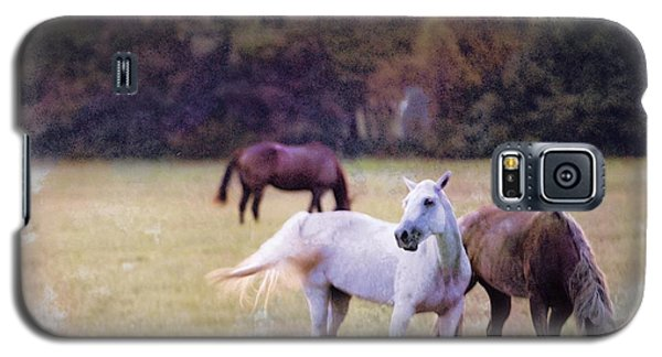 Ok Horse Ranch_1c Galaxy S5 Case