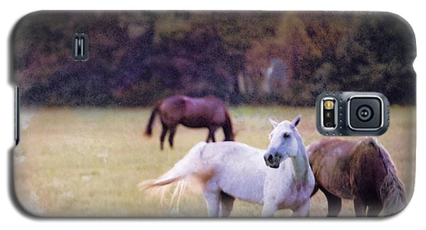 Ok Horse Ranch_1c Galaxy S5 Case