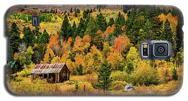 Old Cabin In Hope Valley Galaxy S5 Case
