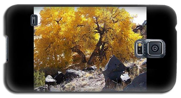 Old Cottonwood Below Black Rocks Galaxy S5 Case