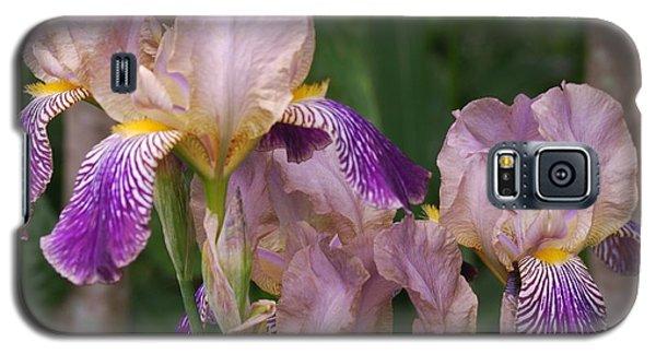 Old-fashioned Iris Galaxy S5 Case