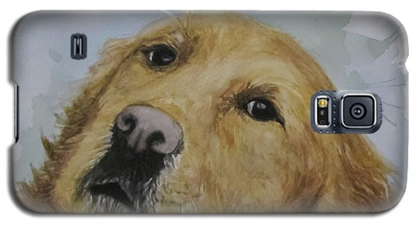 Old Golden Retriver Galaxy S5 Case