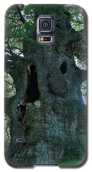 Old Man Tree Galaxy S5 Case