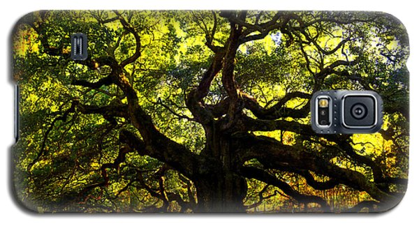 Old Old Angel Oak In Charleston Galaxy S5 Case