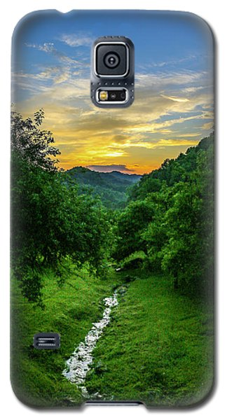 Old Orchard Glow Galaxy S5 Case