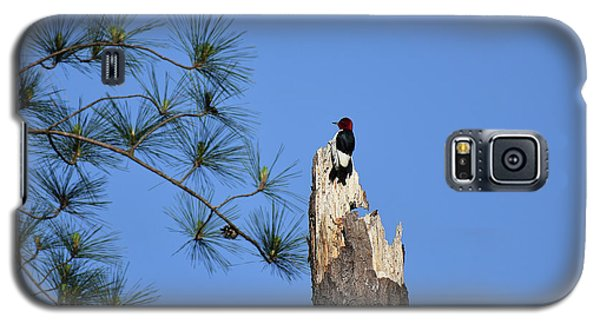 Galaxy S5 Case featuring the photograph Old Red by Skip Willits
