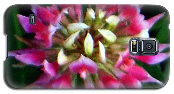 Old Rose Explosive Wildflower Galaxy S5 Case