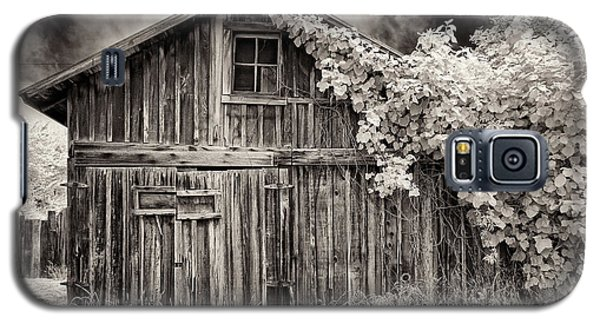 Galaxy S5 Case featuring the photograph Old Shed In Sepia by Greg Nyquist