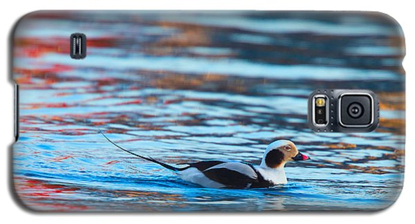 Old Squaw At Dawn Galaxy S5 Case
