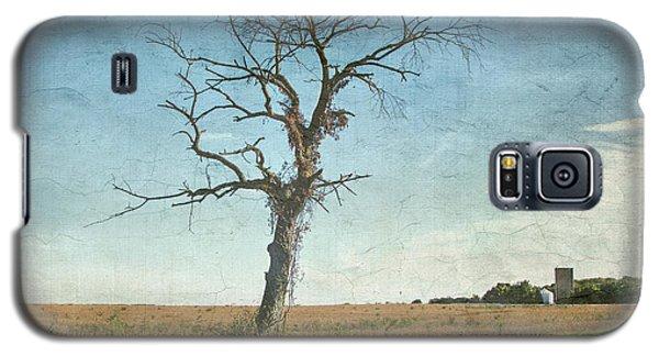 Old Tree  Galaxy S5 Case