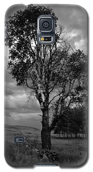 Old Tree, Lost Trail Wildlife Refuge Galaxy S5 Case