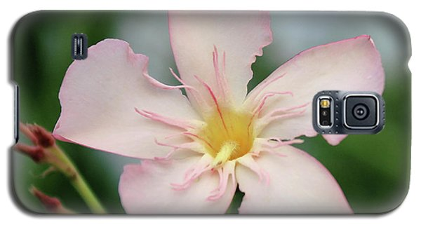 Oleander Agnes Campbell  Galaxy S5 Case