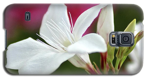 Galaxy S5 Case featuring the photograph Oleander Casablanca 2 by Wilhelm Hufnagl