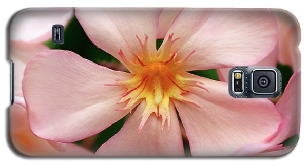 Galaxy S5 Case featuring the photograph Oleander Dr. Ragioneri 1 by Wilhelm Hufnagl