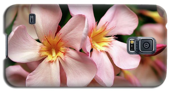 Galaxy S5 Case featuring the photograph Oleander Dr. Ragioneri 2 by Wilhelm Hufnagl