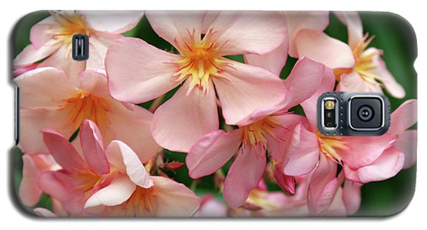 Galaxy S5 Case featuring the photograph Oleander Dr. Ragioneri 3 by Wilhelm Hufnagl