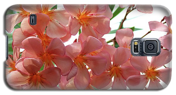 Galaxy S5 Case featuring the photograph Oleander Dr. Ragioneri 4 by Wilhelm Hufnagl