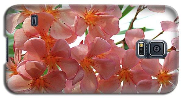 Oleander Dr. Ragioneri 4 Galaxy S5 Case