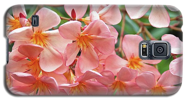 Galaxy S5 Case featuring the photograph Oleander Dr. Ragioneri 5 by Wilhelm Hufnagl