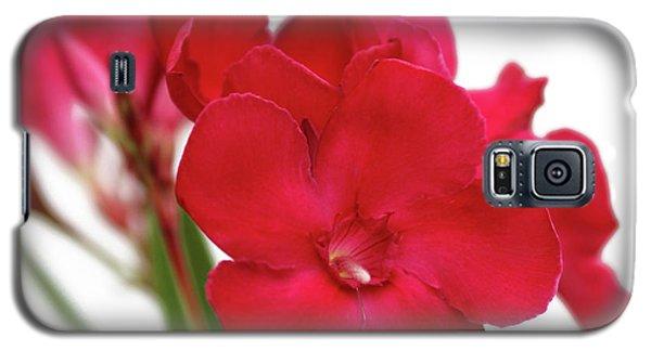 Oleander Emile Sahut 1 Galaxy S5 Case