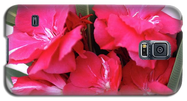 Galaxy S5 Case featuring the photograph Oleander Geant Des Batailles 1 by Wilhelm Hufnagl