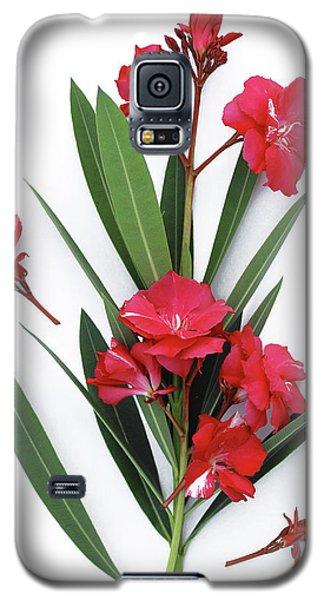 Oleander Geant Des Batailles 2 Galaxy S5 Case
