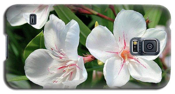 Oleander Harriet Newding 3 Galaxy S5 Case