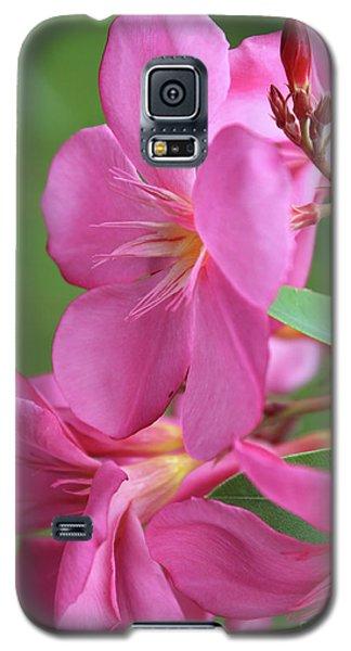 Oleander Maresciallo Graziani 2 Galaxy S5 Case