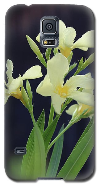 Galaxy S5 Case featuring the photograph Oleander Marie Gambetta 2 by Wilhelm Hufnagl