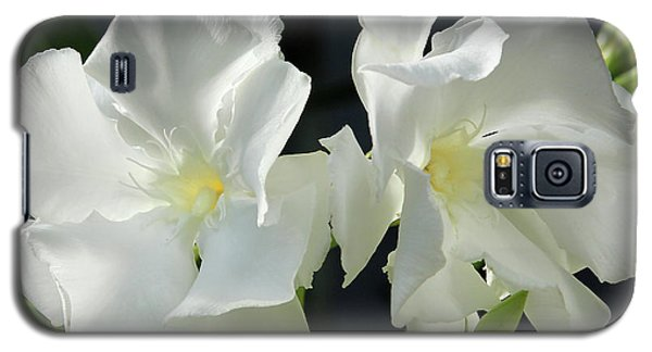 Oleander Mont Blanc 1 Galaxy S5 Case