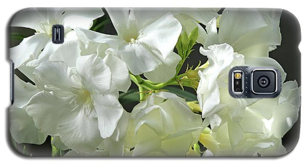 Oleander Mont Blanc 2 Galaxy S5 Case