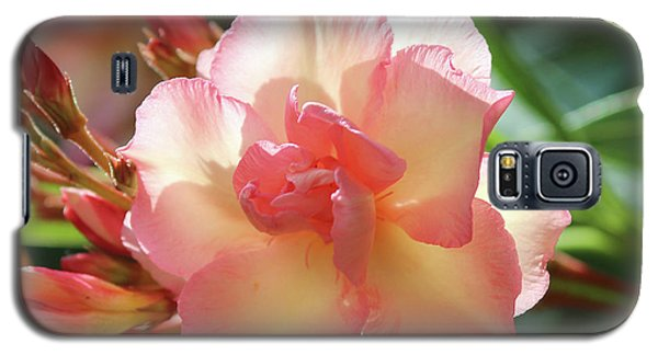 Galaxy S5 Case featuring the photograph Oleander Mrs. Roeding 1 by Wilhelm Hufnagl