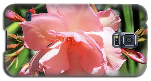 Oleander Mrs. Roeding 3 Galaxy S5 Case
