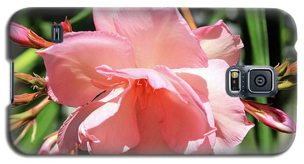 Oleander Mrs. Roeding 3 Galaxy S5 Case