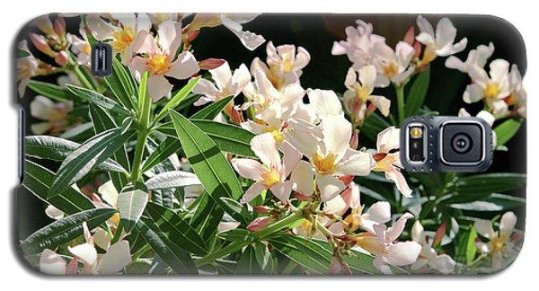 Oleander Petite Salmon 3 Galaxy S5 Case