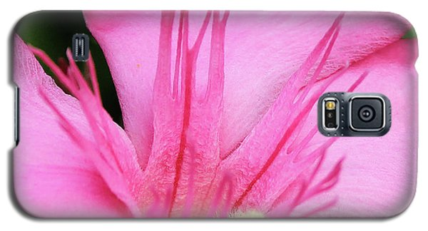 Oleander Professor Parlatore 3 Galaxy S5 Case