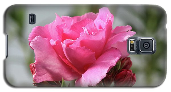 Galaxy S5 Case featuring the photograph Oleander Splendens Giganteum 2 by Wilhelm Hufnagl