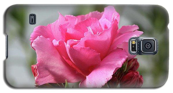 Oleander Splendens Giganteum 2 Galaxy S5 Case