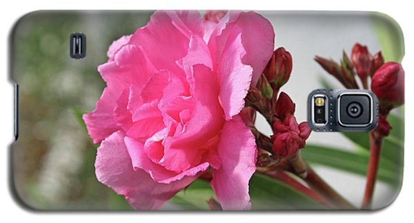 Galaxy S5 Case featuring the photograph Oleander Splendens Giganteum 4 by Wilhelm Hufnagl