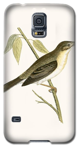 Olivaceous Warbler Galaxy S5 Case by English School