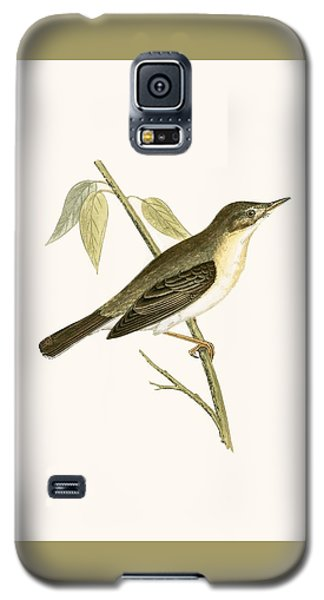 Olivaceous Warbler Galaxy S5 Case