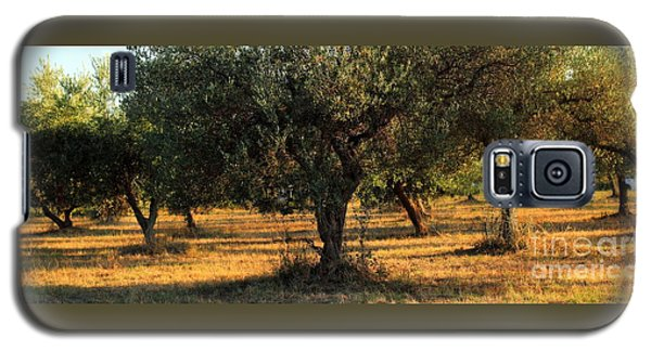 Olive Grove 3 Galaxy S5 Case