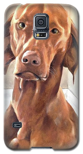 Oliver Galaxy S5 Case by Diane Daigle