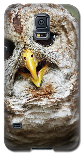 Galaxy S5 Case featuring the photograph Oliver Owl by Arthur Dodd